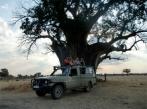 SKIP HYMS - Tanzania